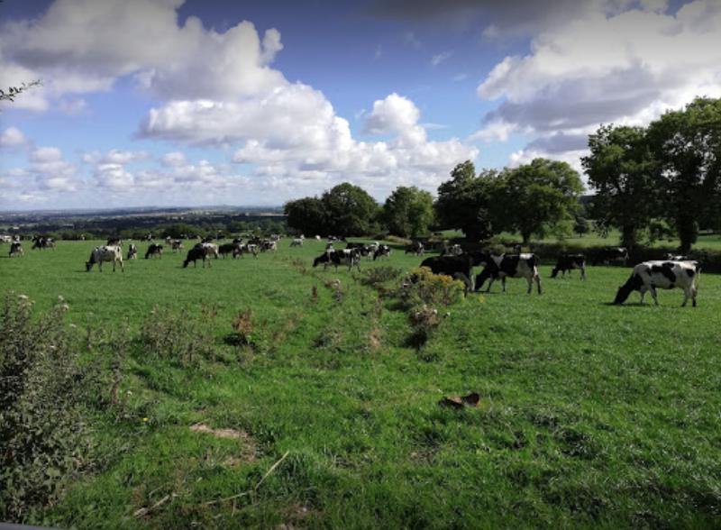 Tara, County Meath, Ireland